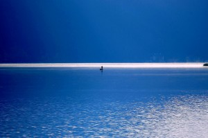 This photo is called 'The Sound of Silence' - which is what happens when people don't prepare any answers!