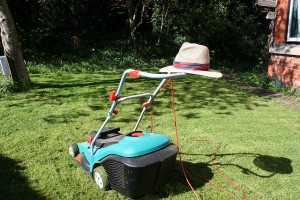 Don't try and mow the lawn...go and do something less boring instead!